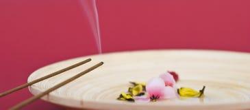 Bastoni di incenso sulla zolla di legno Fotografia Stock Libera da Diritti