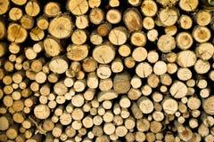 Bastoni di legno Fotografie Stock Libere da Diritti