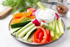 Bastoni di verdure del cetriolo, del pepe, delle carote, del sedano e del ravanello immagine stock