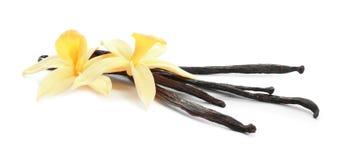 Bastoni e fiori aromatici della vaniglia su bianco immagini stock libere da diritti