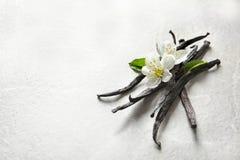 Bastoni e fiori della vaniglia immagine stock libera da diritti