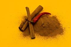 Bastoni e polvere di cannella e di pepe rosso fotografia stock libera da diritti