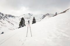 Bastoni rampicanti in neve fotografia stock
