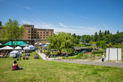 Bastyr University Herb and Food Fair overlooking view Royalty Free Stock Photography