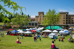 Bastyr University Herb and Food Fair vendor tents on campus lawn Royalty Free Stock Photos