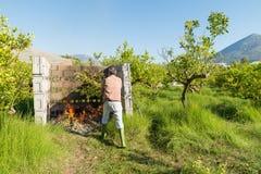 Basura ardiente de la poda Imagen de archivo