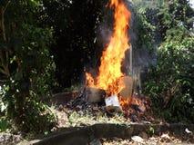 Basura ardiente en las zonas tropicales almacen de metraje de vídeo