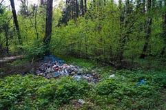 Basura en el bosque Foto de archivo
