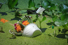 Basura en el río/la espuma con el jacinto fotos de archivo