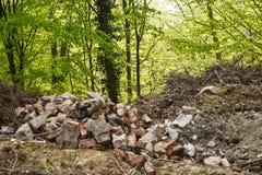 Basura en basura ilegal lanzada de la gente del bosque en el concepto del bosque de hombre y de naturaleza Descarga de basura ile imagenes de archivo
