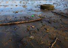 Basura en la playa de Hudson River en Albany NY Fotografía de archivo libre de regalías