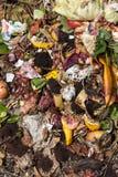Basura orgánica tomada desde arriba foto de archivo