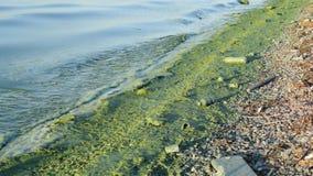 Basura sucia en la orilla que contamina nuestras aguas en el terraplén concreto metrajes