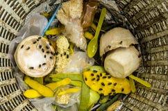 Basura y moscas de la basura imagen de archivo libre de regalías
