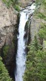 Basztowy spadek, Yellowstone park narodowy Obraz Royalty Free