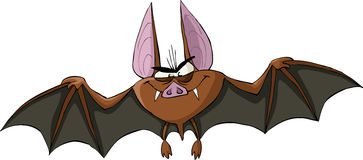 Bat. On a white background, vector vector illustration