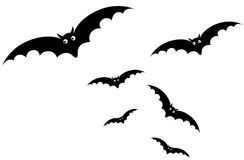 Bat. Illustration of isolated cartoon bat flying on white background Stock Photography