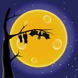 Bat. On a tree on the background of the Moon Royalty Free Stock Photos