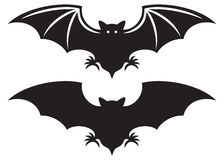 Bat. Silhouette of bat, flight of a bat Royalty Free Stock Photos