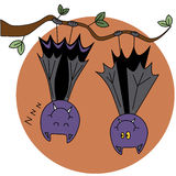 Bat. Two bat hanging from a tree on the background of the moon Royalty Free Stock Images