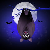 Bat bloodsucker. Illustration of bats hanging of Halloween Stock Photos