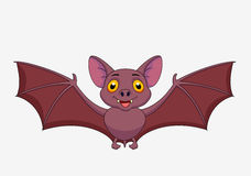Bat cartoon flying Royalty Free Stock Images