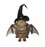 The bat -  cat in a hat. Stock Photo