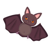 Bat so cute Royalty Free Stock Photos