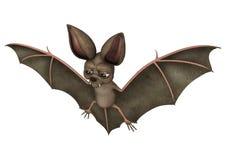 Bat Royalty Free Stock Photos