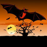 'bat' de sang Photo stock