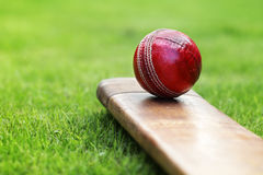 'bat' et bille de cricket image stock