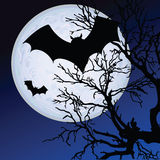 Bat fly in the moonlight illustration Royalty Free Stock Photo