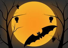 Bat flying in the night and sleep on a dead trees. Bat flying in the night and sleep on a dead trees and full moon. Vector design Halloween concept Royalty Free Stock Photos