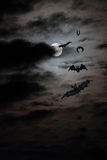 Bat full moon Royalty Free Stock Photo