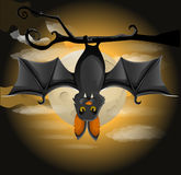 Bat hanging on a branch Stock Image