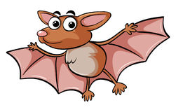 Bat with happy face Stock Photo