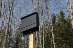 Bat House on. A new bathouse mounted on a post Stock Image