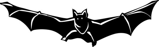 Bat Illustration. Line Art Illustration of a Bat Stock Photography