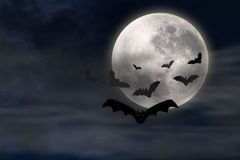 Bat and Moon Stock Photography