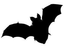 Bat at night Royalty Free Stock Image