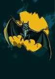Bat in the night sky Stock Photo
