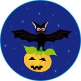 Bat and pumpkin Royalty Free Stock Photos