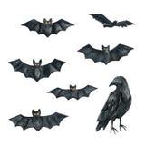 Bat, Raven. Halloween Party Illustration. Watercolor drawing Royalty Free Stock Photos