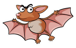 Bat with serious face. Illustration Stock Photo