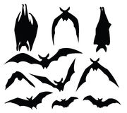 Bat silhouette Stock Photo