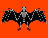Bat skeleton Stock Photos