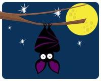 A bat on the tree Royalty Free Stock Photo