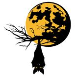 Bat on tree branch against full moon vector Royalty Free Stock Images