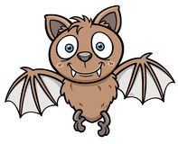 Bat. Vector illustration of Cartoon bat Stock Images