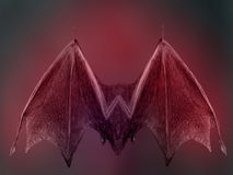 Bat Wings Royalty Free Stock Photo